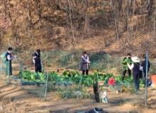 [경북교육청]학교텃밭에서 아이들의 꿈과 행복을 가꾸다